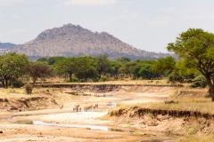 Tanzania-701400